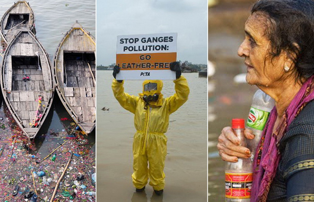 «Ганг, твои воды замутились»: индийцы решили очистить Великую реку