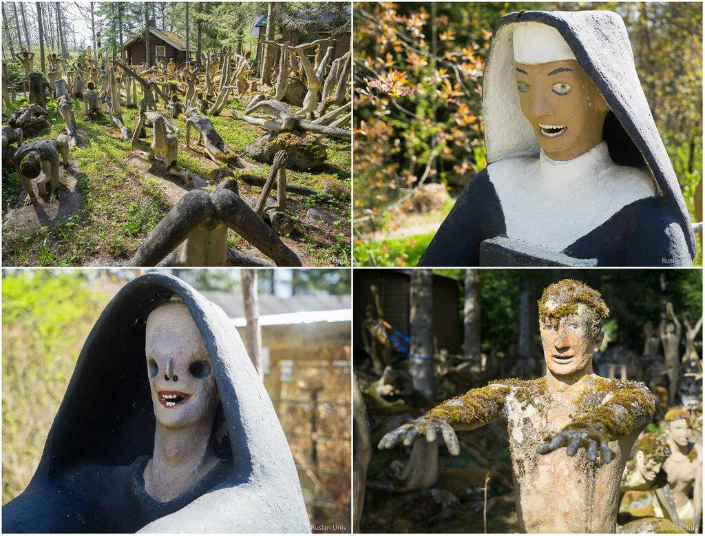 Сумасшедший лес в Финляндии