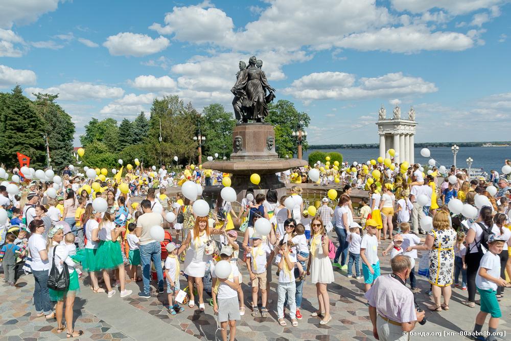 Фестиваль Ромашковый Волгоград