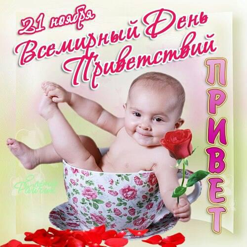 21 ноября. Всемирный день приветствий. Роза для тебя