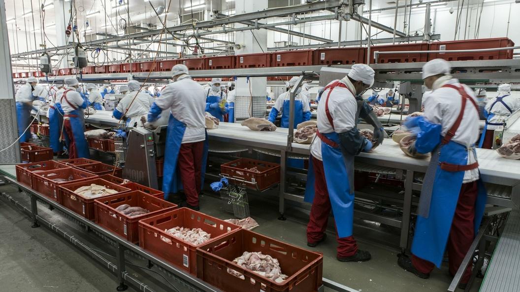 Российское молоко скоро появится натурецком рынке— Ткачев