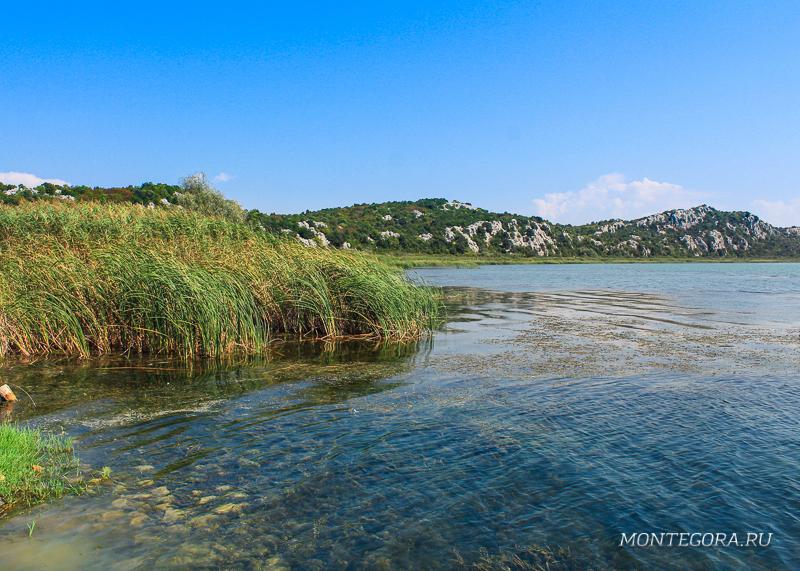 Шасское озеро считается вторым по величине озером Черногории