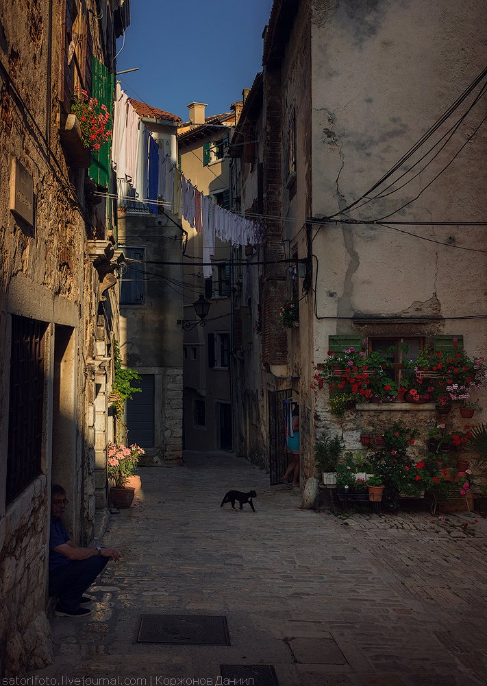 В 17-18 веках Ровинь имел особое влияние среди всех городов Истрии как главный порт, судостро