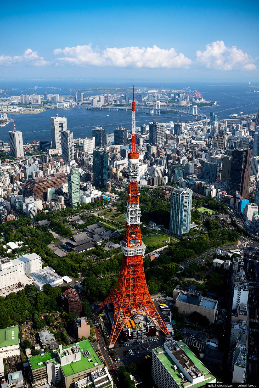 15. На башне есть две смотровые площадки на уровнях 150 и 250 метров.