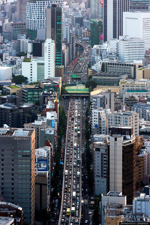57. Напряжённый автомобильный трафик вызывает не только «пробки», но и загрязнение воздуха.