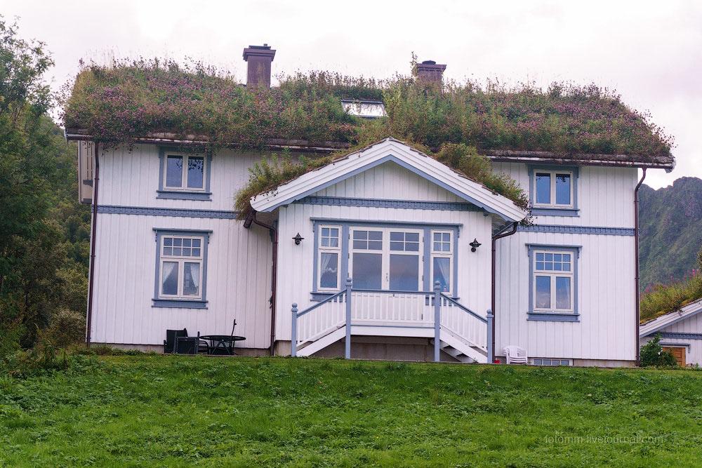 Невероятная Норвегия. Дома с травяной крышей.