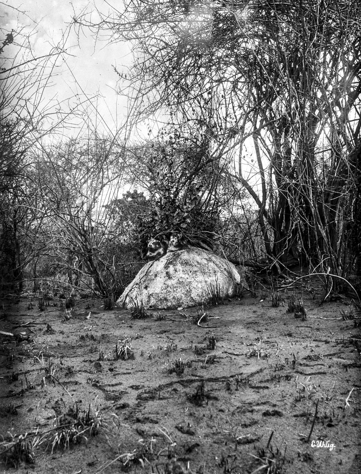 184. Степная растительность с скалой около Кихурио
