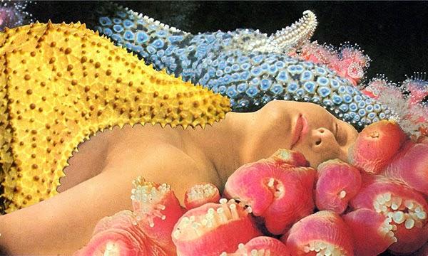 The sea of love, Javier Piñón1280.jpg