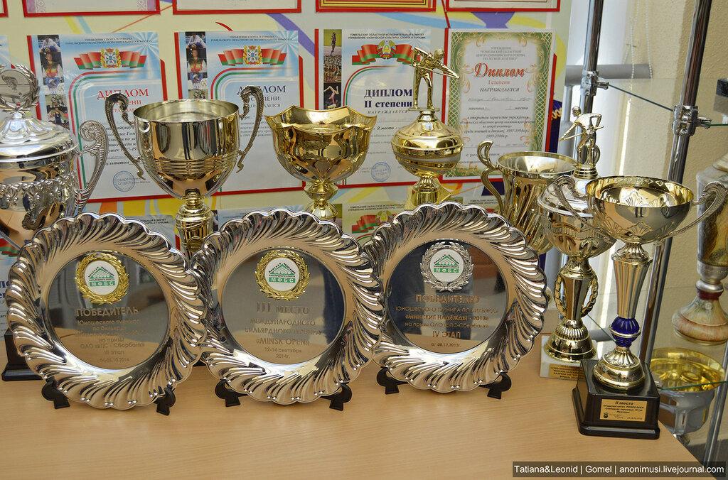 Кубок славянских государств по бильярду. Калинковичи