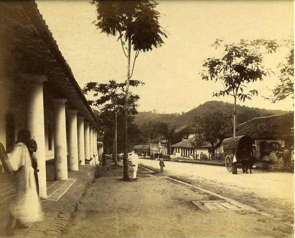 Коломбо. Уличная сцена. 1900