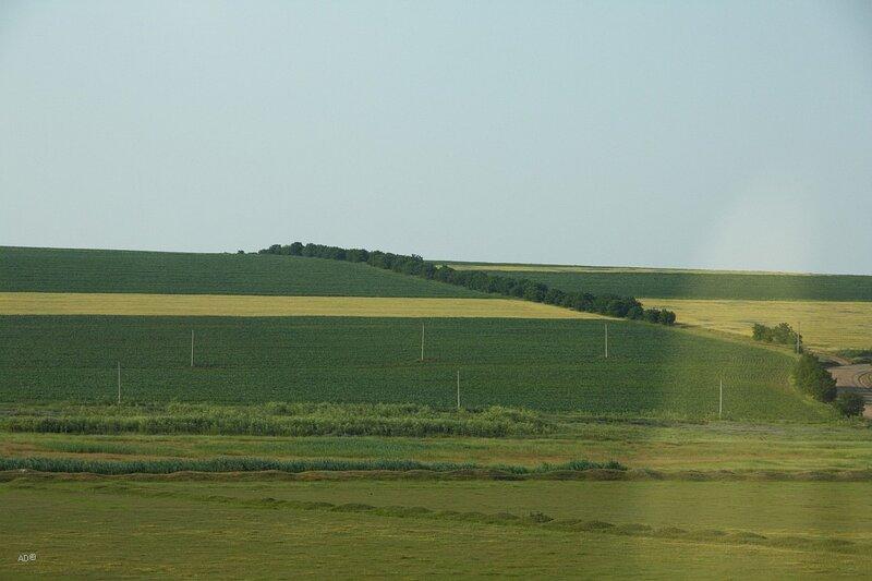 Молдова - 2010