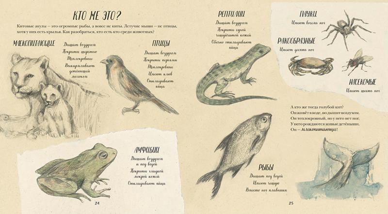Animals_Book.indd