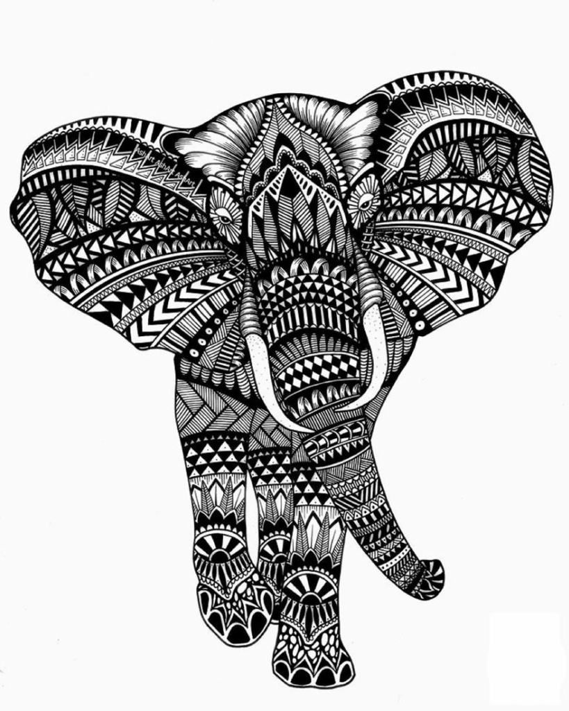 Ashley-Adam-Elephant-59caabf7cbdc2__880.jpg