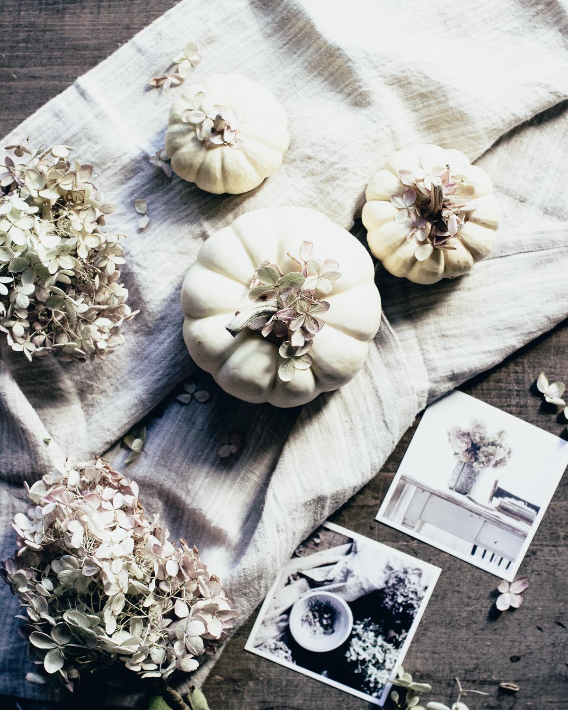 Autumn / фотограф Kathy Pardell