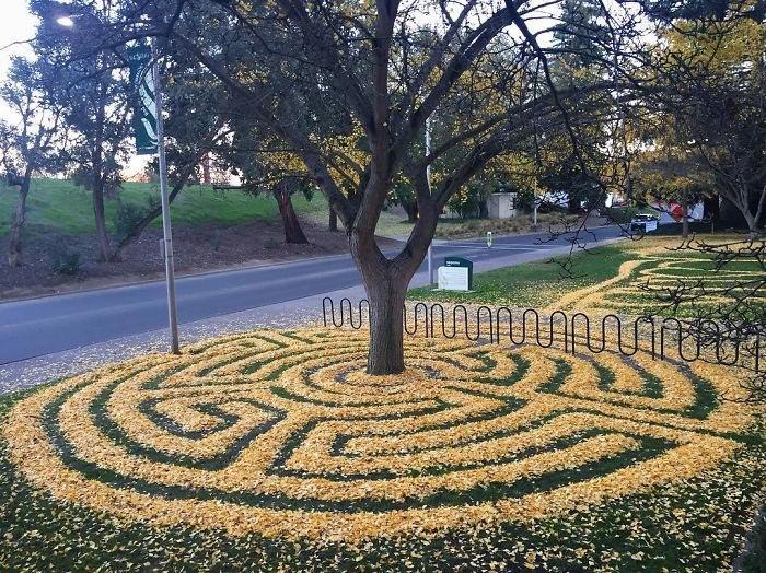Каждый год эта женщина выкладывает опавшие листья в замысловатые узоры