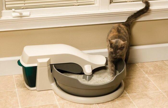 stop cats pooping in garden amazon