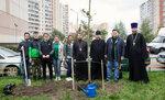 16 сентября одной из центральных площадок акции стал Славянский бульвар, ведущий к храму Кирилла и Мефодия г. Подольска. высажено более 200 деревьев и 500 кустарников