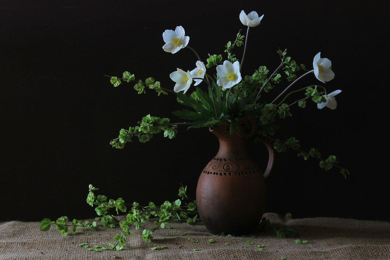 Опять цветению садов пришла пора...