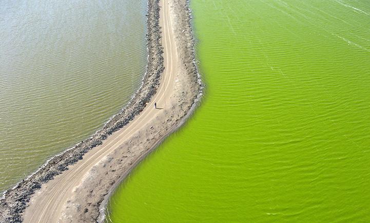 Cris Benton photographs the vibrant-colored salt ponds of South San Fransicsco Bay from the sky.