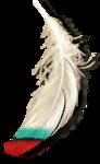 Tribal_Impressions_RRD_el (44).png