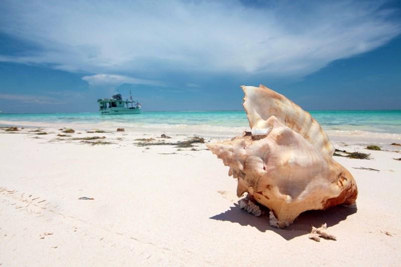 Фотографии острова Черепаха в Венесуэле