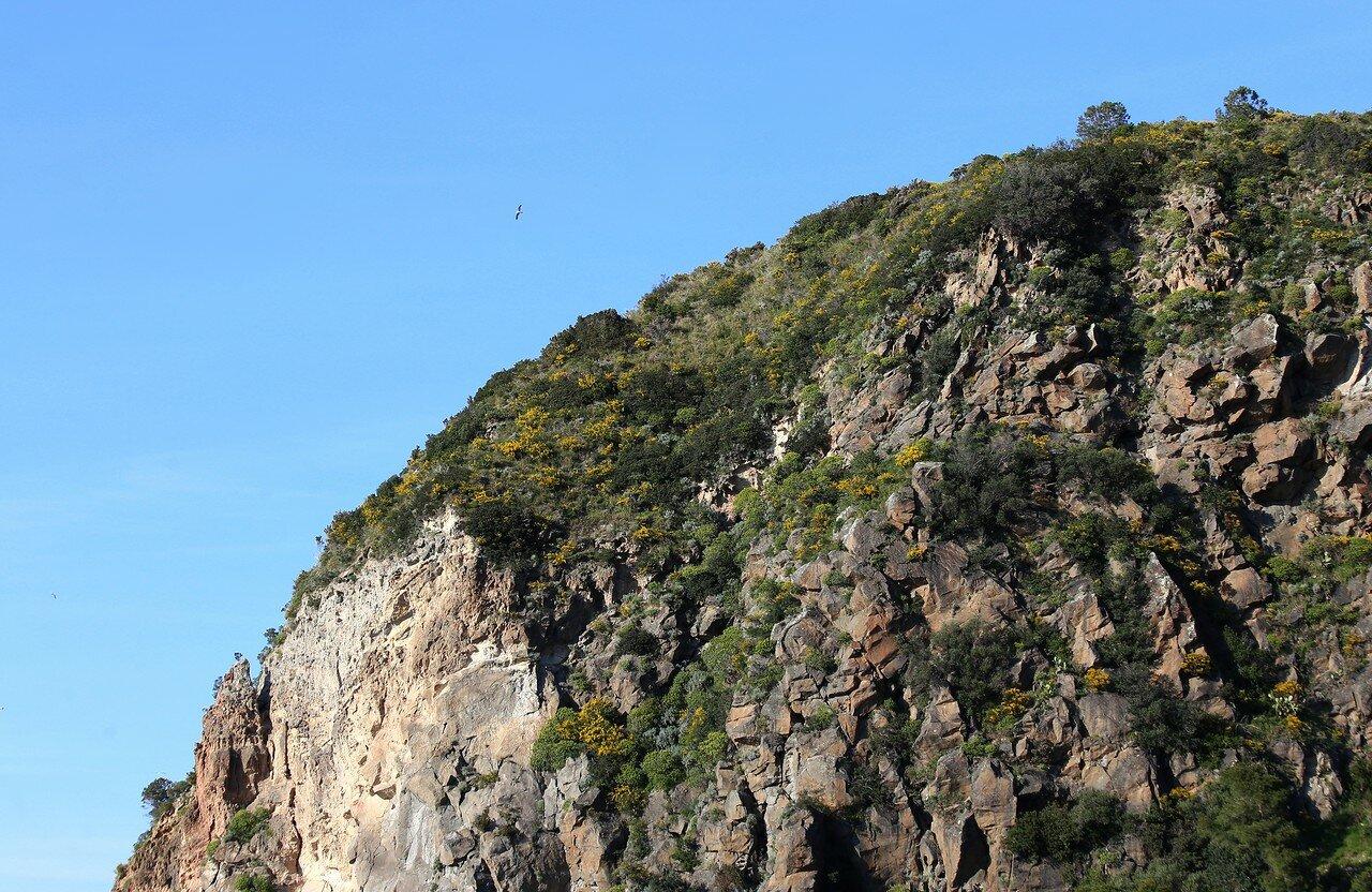 Ischia, Monte Di Vico