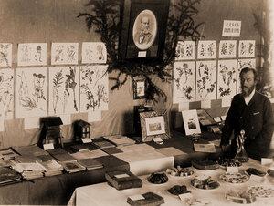 Экспонаты выставки - пособия по пчеловодству.
