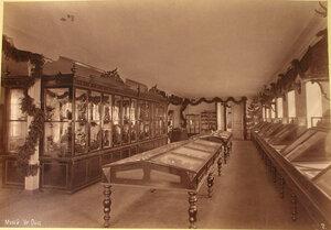Вид части одного из залов музея Уральского общества любителей естествознания.