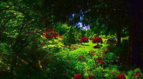 Жемчужина Канады — восхитительные Сады Бутчартов