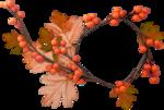 Carena_Autumn Crunch_20.png