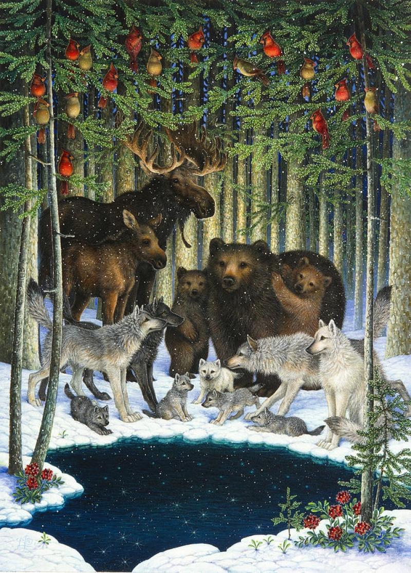 Рождественский Сбор