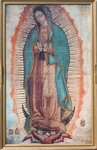 our-lady-of-guadalupe.jpg