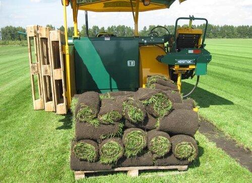 Технология выращивания рулонного газона 52