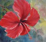 Jamaica-Hibiscus.jpg