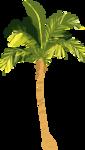 пальмы море (7).png