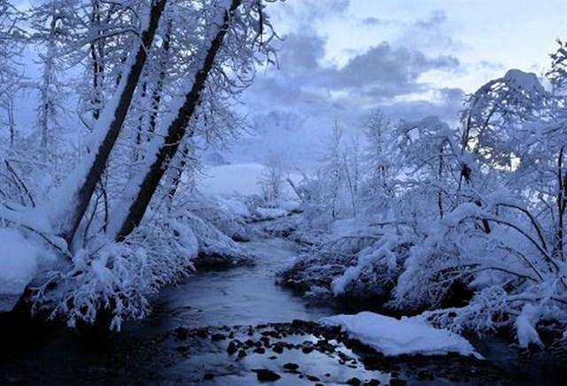 100 самых красивых зимних фотографии: пейзажи, звери и вообще 0 10f5a1 e7112d3 orig