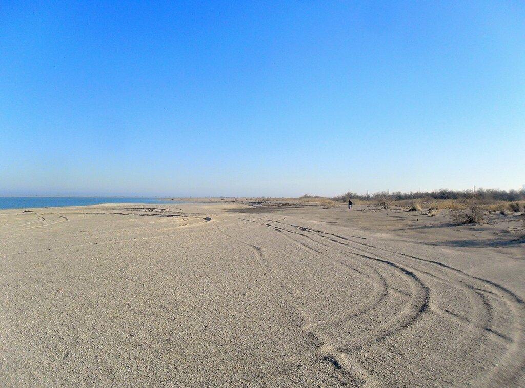 У моря, ноябрь, на дальнем берегу ... SAM_4481.JPG