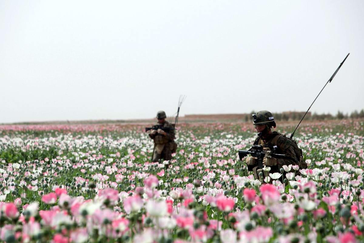 Посреди маковых полей Афганистана - фотографии военнослужащих корпуса морской пехоты США (7)