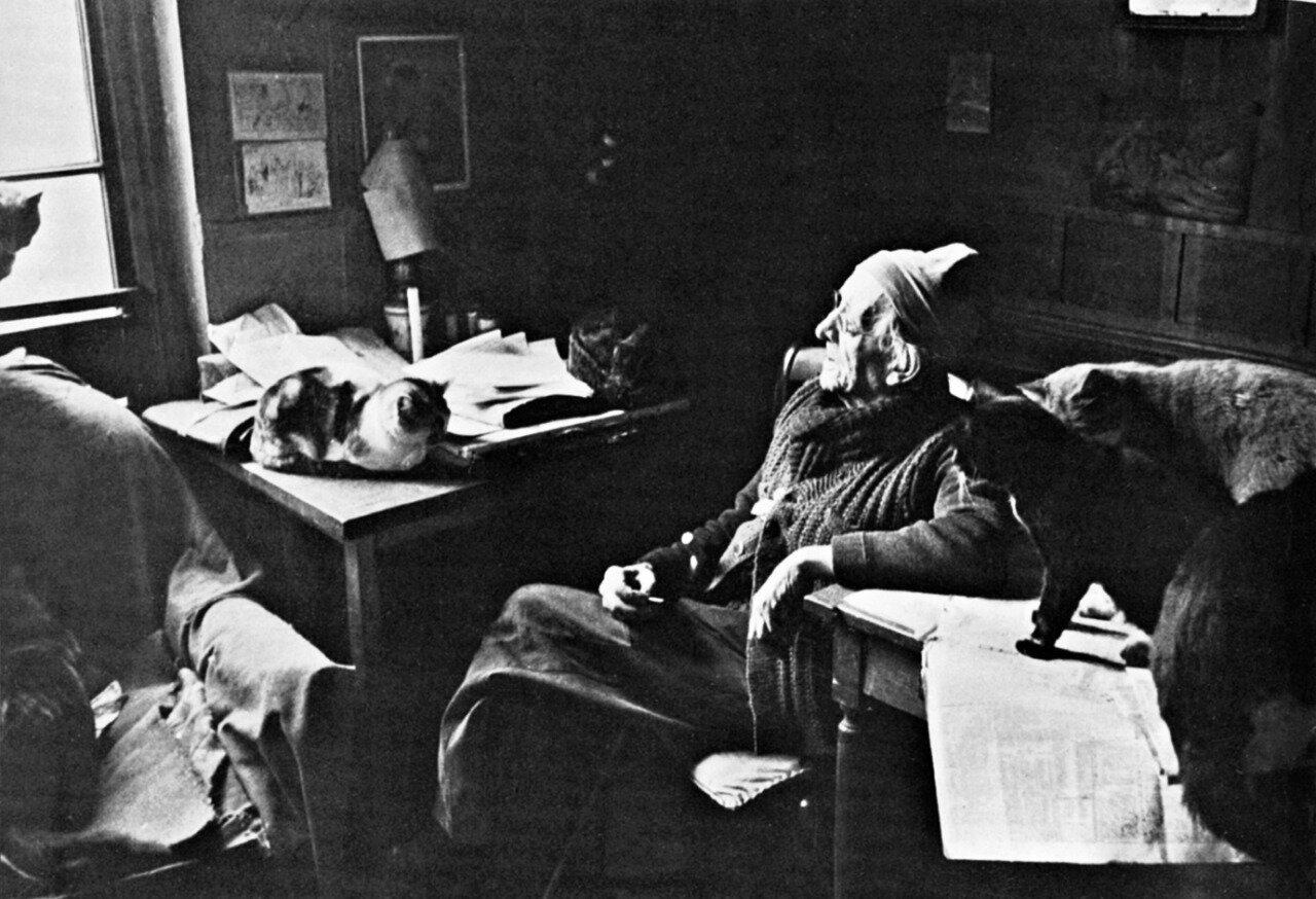 1953. Поль Леото и его кошки