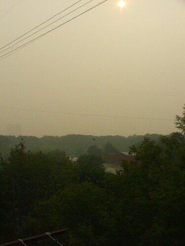 смог-2010