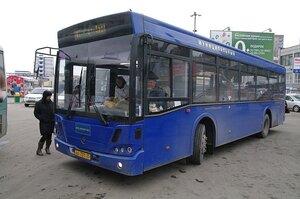 Стоимость проезда в автобусах Владивостока может вырасти