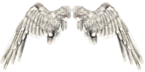 Крылья - КлипАрт