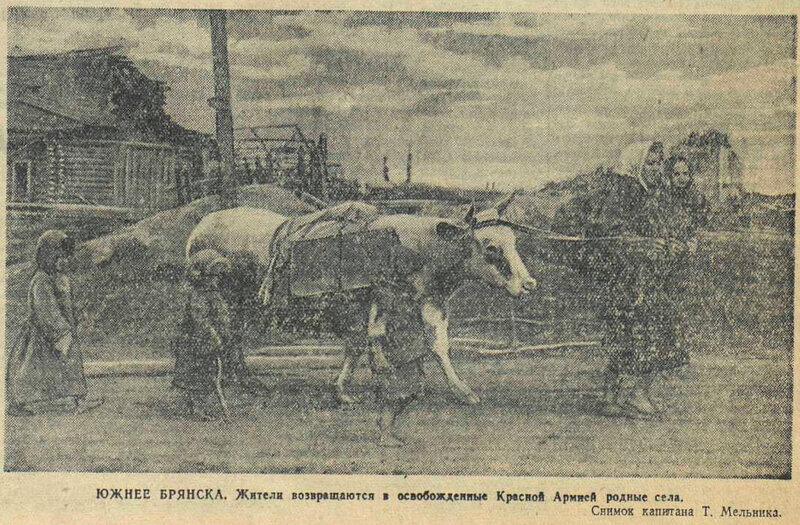 «Красная звезда», 8 сентября 1943 года, немецкая оккупация