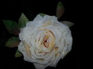 Роза - царица цветов 3 - Страница 2 0_1061f5_74665665_M