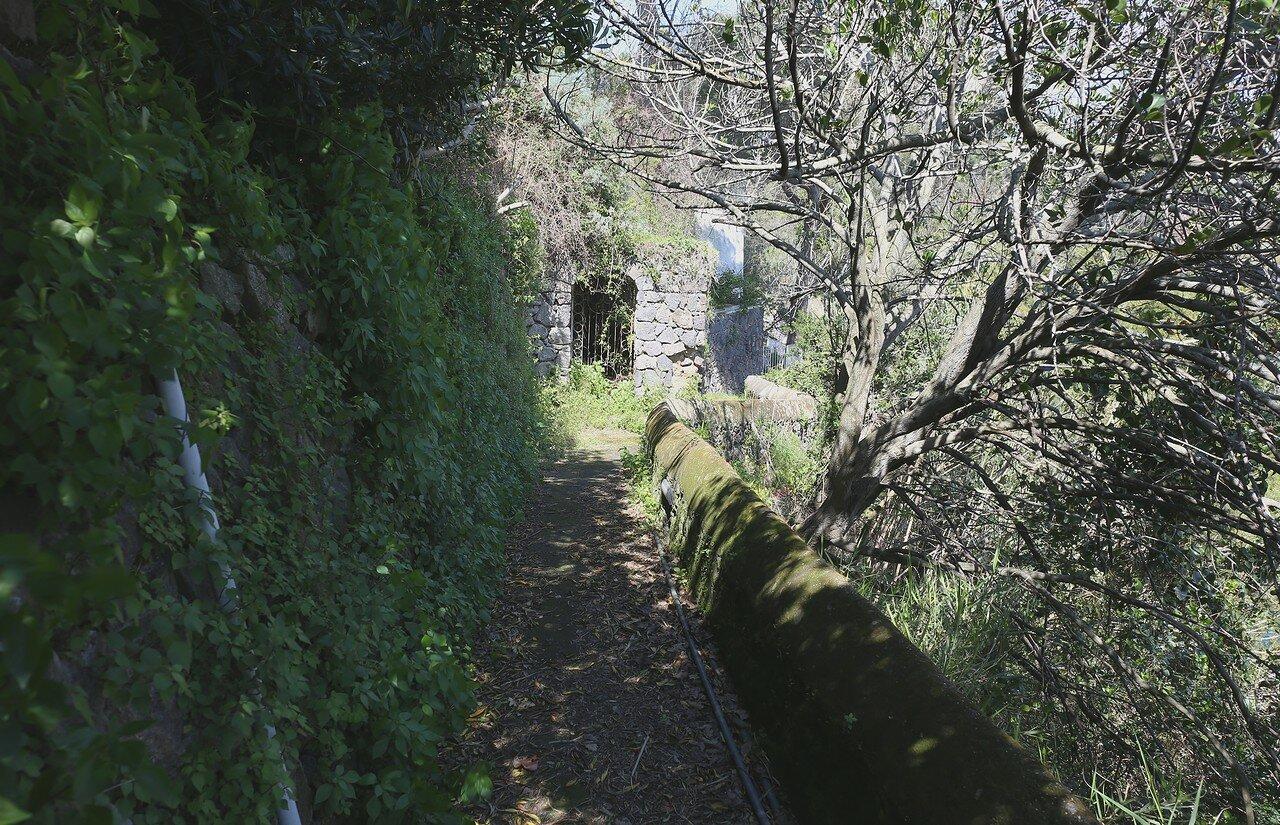 Искья. Cimitero Veccio