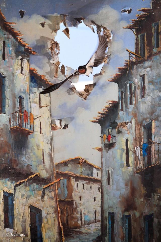 9. Хуан Тапия (Испания), «В искусство приходит жизнь». Победитель в категории «Впечатления». Тапия с