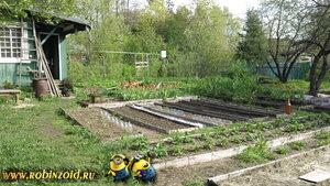 огород в мае