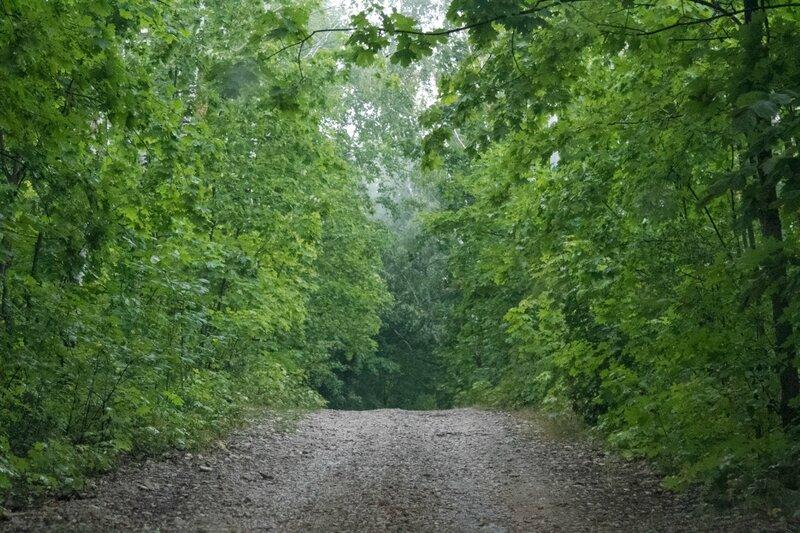 Дорога на вершину, Жигулевские горы, гора Стрельная