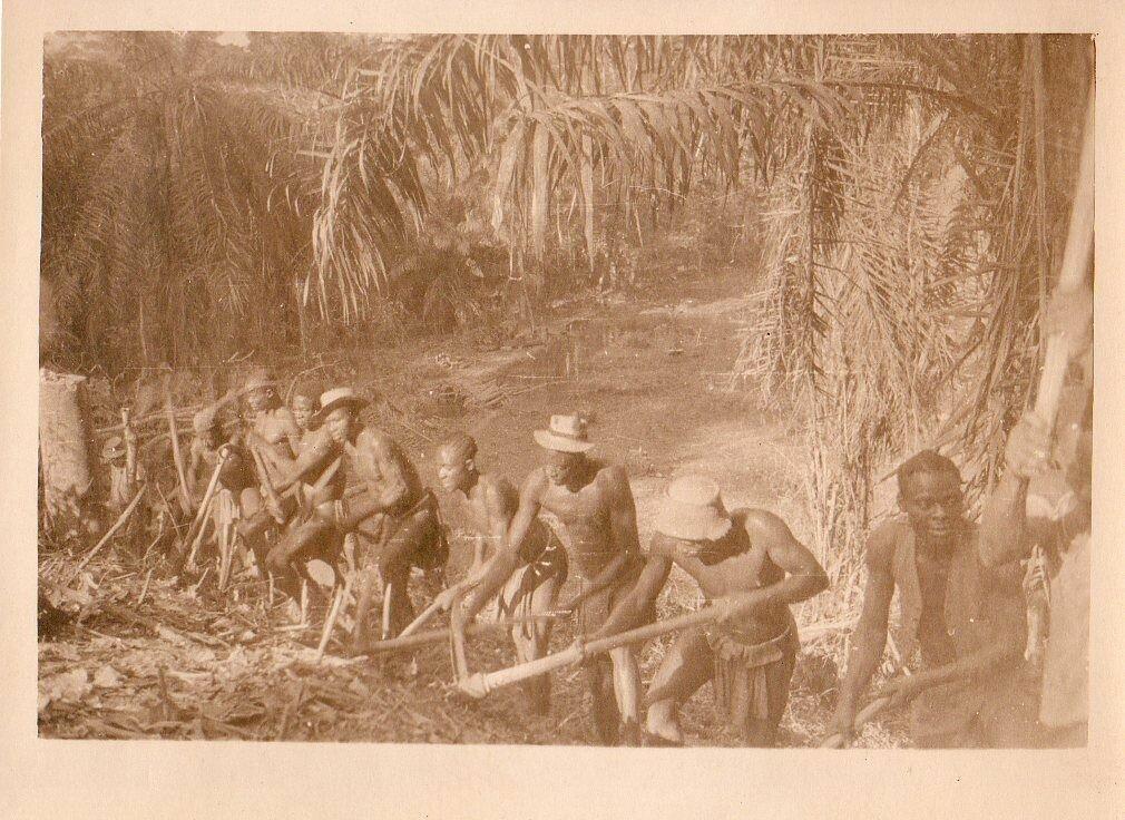 1930. Западная Африка, Работа в буше