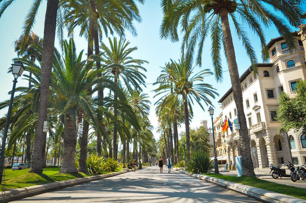 Mallorca-(14).jpg